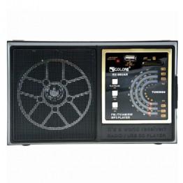 радиоприемник от сети с USB, SD и с аккумулятором 21.5см*13.5см*7.5см GOLON RX-98UAR