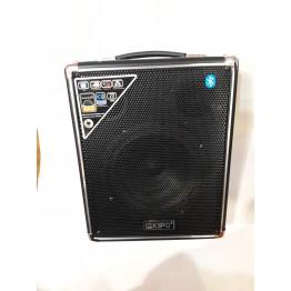 колонка в виде чемодана от сети и от аккумулятора с USB, SD, FM, Bluetooth. с выходом на микрофон и AUX, 12V 32см*22см*14.5см KIPO KB-Q1