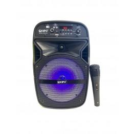 колонка в виде чемодана от сети и от аккум., с микрофоном, пультом, USB, SD, FM, Bluet., светомуз., разъемом под штатив с выходом на AUX и 12V 33.5см*20.2см*19.3см KIPO KB-Q10