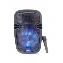 колонка в виде чемодана от сети и от аккум., с микрофоном, пультом, USB, SD, FM, Bluet., светомуз., разъемом под штатив с выходом на AUX и 12V 40см*25см*21см KIPO KB-Q5