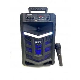 колонка в виде чемодана от сети и от аккум., с микрофоном, пультом, USB, SD, FM, Bluet., светомуз. с выходом на AUX и 12V 36.2см*23.2см*20.5см KIPO KB-Q8